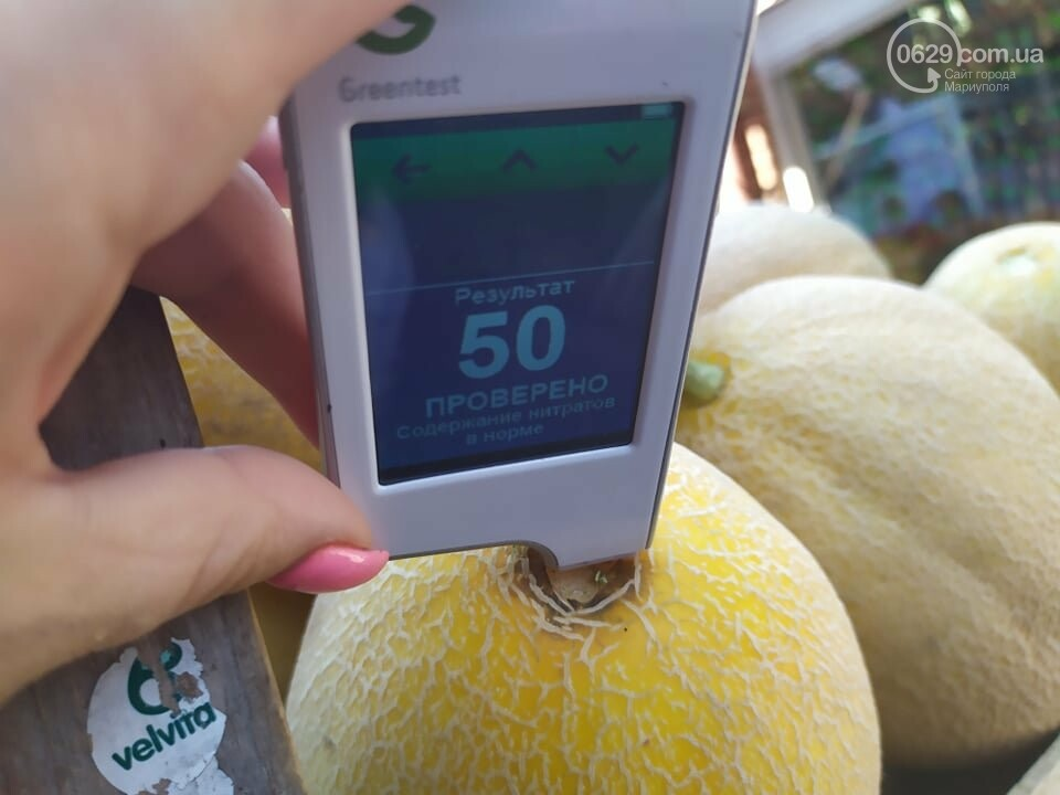 Осторожно, нитраты! Можно ли в Мариуполе покупать арбузы и дыни, - ФОТО, фото-6