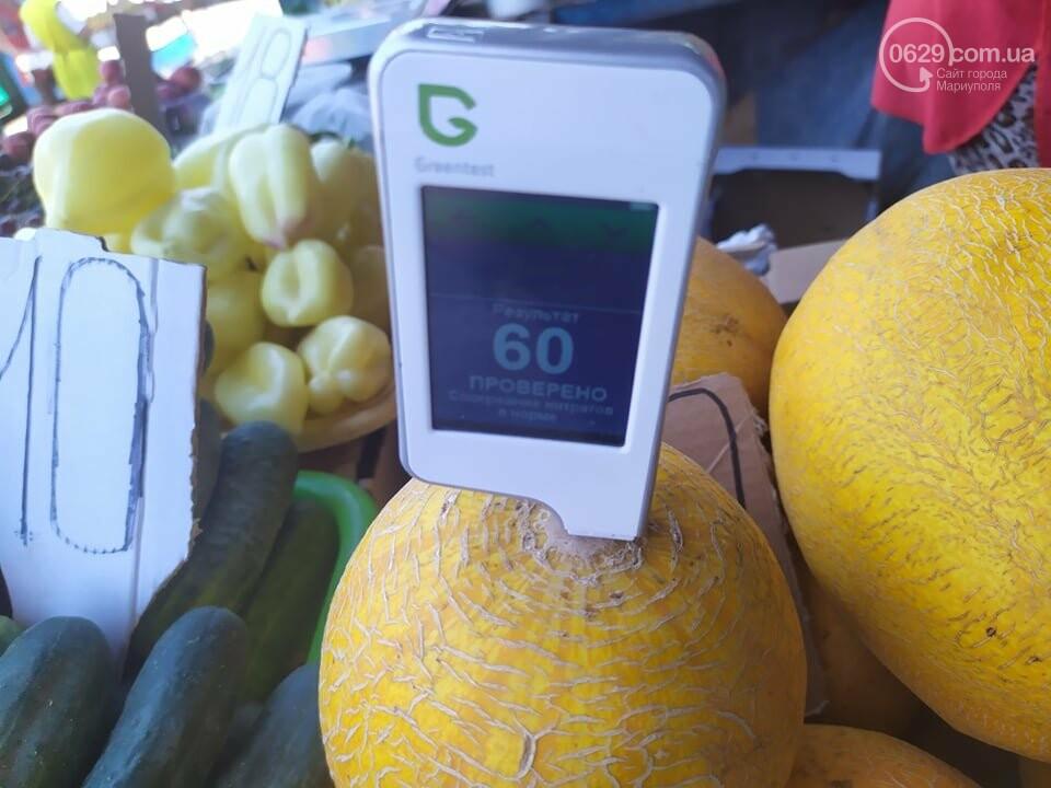 Осторожно, нитраты! Можно ли в Мариуполе покупать арбузы и дыни, - ФОТО, фото-4