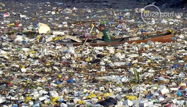 Можно ли зарабатывать на собственном мусоре? Опыт мариупольской семьи, фото-2