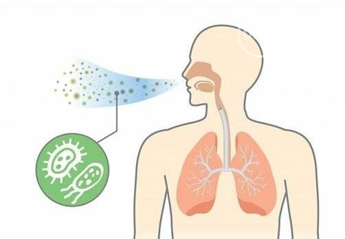 «О2 Фильтр» - Экология Дома: СТОП выхлопным газам, заводскому смогу, аллергенной пыли и черным подоконникам в Вашей квартире!, фото-3