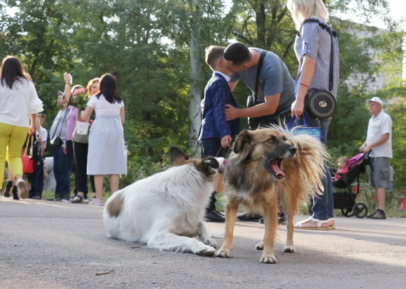 Первый звонок в Новой украинской школе: четыре тысячи первоклашек сели за парты в Мариуполе, - ФОТОРЕПОРТАЖ, фото-17
