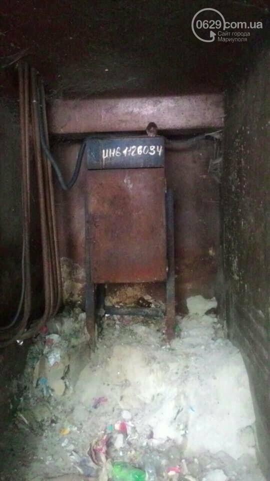 Жильцам дома по улице Мамина-Сибиряка не дают жить крысы,- ФОТО, фото-3