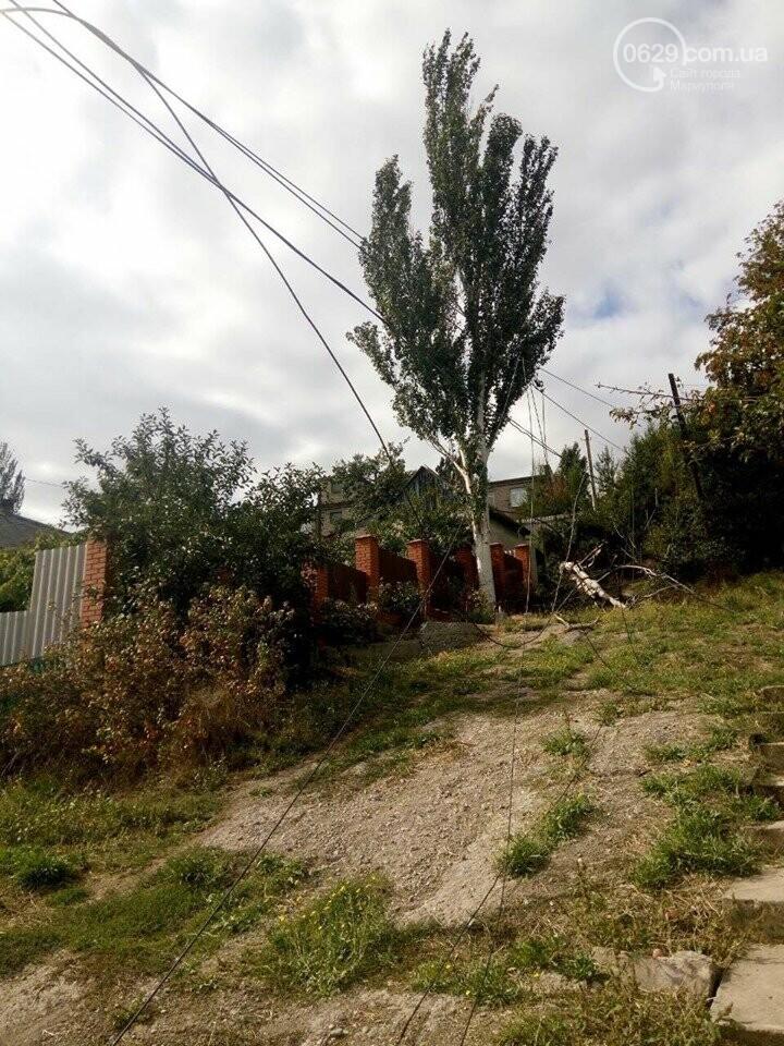 Жители улицы Одесской сами подняли аварийные провода, не дожидаясь ДТЭК,- ФОТО, фото-1