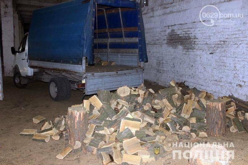 Компания преступников уничтожила лес под Мариуполем на миллион гривен,- ФОТО, фото-5