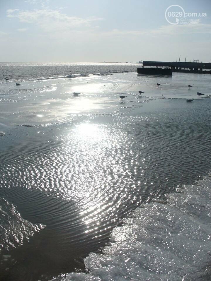 Замерзшее море: мариупольцы купались и выходили на лед, фото-6