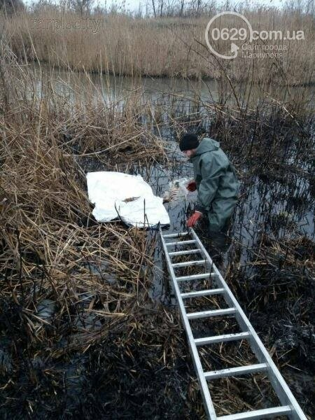 В Мариуполе в реке Кальчик обнаружили труп, - ФОТО, фото-1