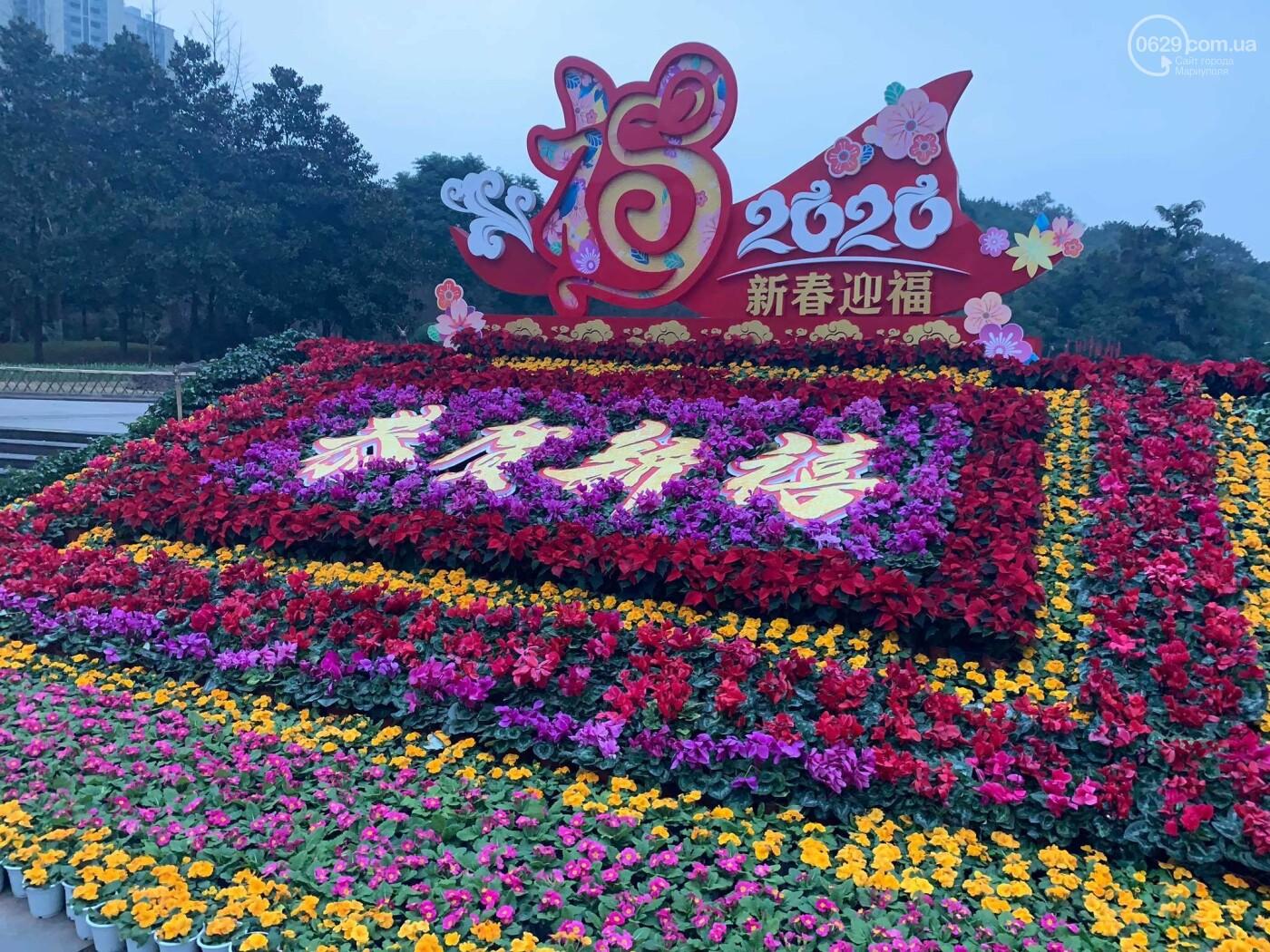 Про Китай, коронавирус и мариупольцев в эпицентре инфекции, - ФОТО, фото-19