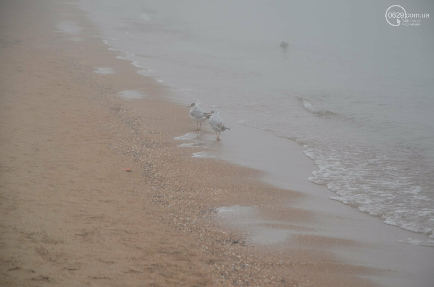 Мариуполь в тумане, усиливаются неблагоприятные метеорологические условия, - ФОТО, фото-6