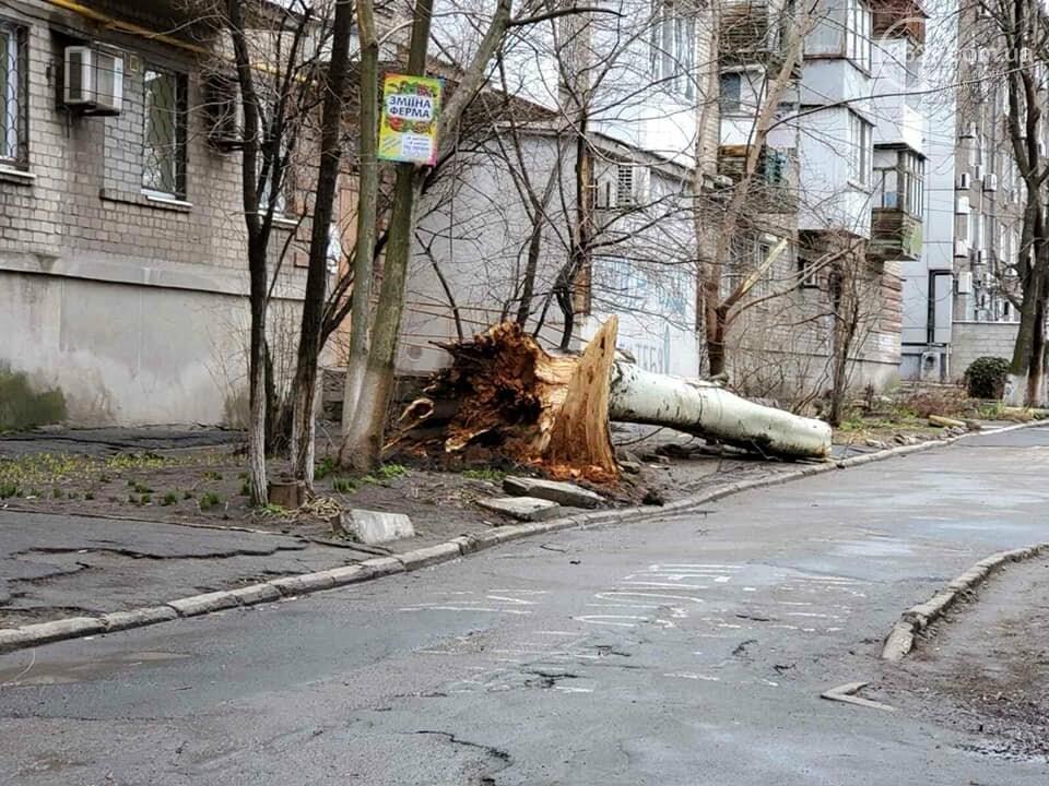 Шторм в  Мариуполе:  ветер вырывает с корнем деревья и сносит металлические конструкции,- ФОТО,  ВИДЕО, фото-2