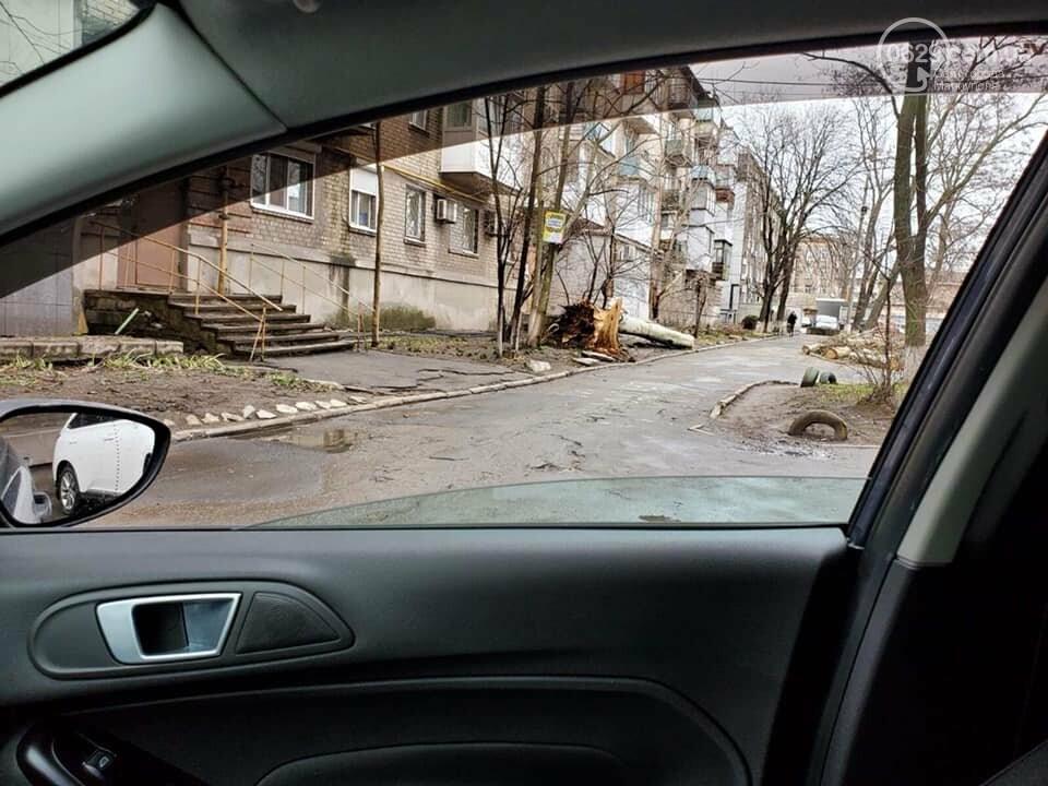 Шторм в  Мариуполе:  ветер вырывает с корнем деревья и сносит металлические конструкции,- ФОТО,  ВИДЕО, фото-1