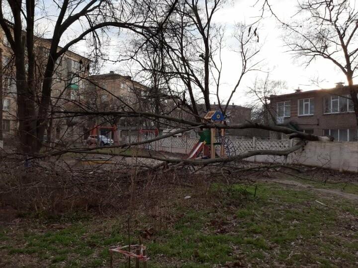 Поваленные деревья, поврежденные машины, крыши, дома, обесточенные кварталы… Ураган в Мариуполе не стихает, фото-3