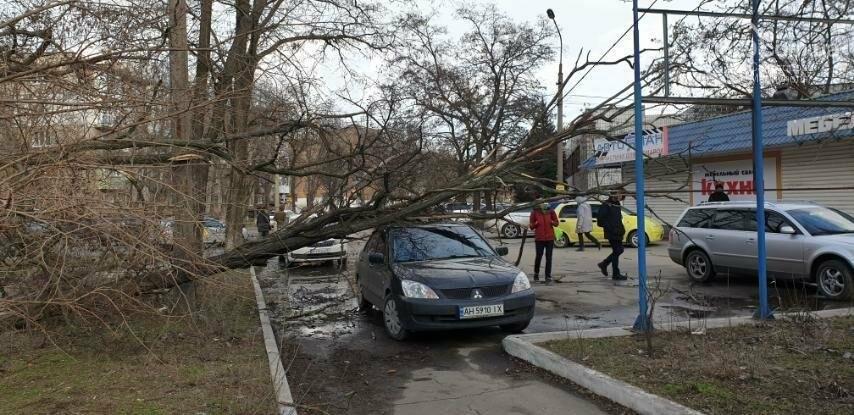 Поваленные деревья, поврежденные машины, крыши, дома, обесточенные кварталы… Ураган в Мариуполе не стихает, фото-1