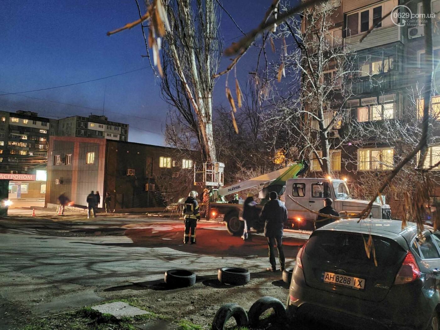В Мариуполе спасатели убрали опасное дерево, - ФОТО, фото-12