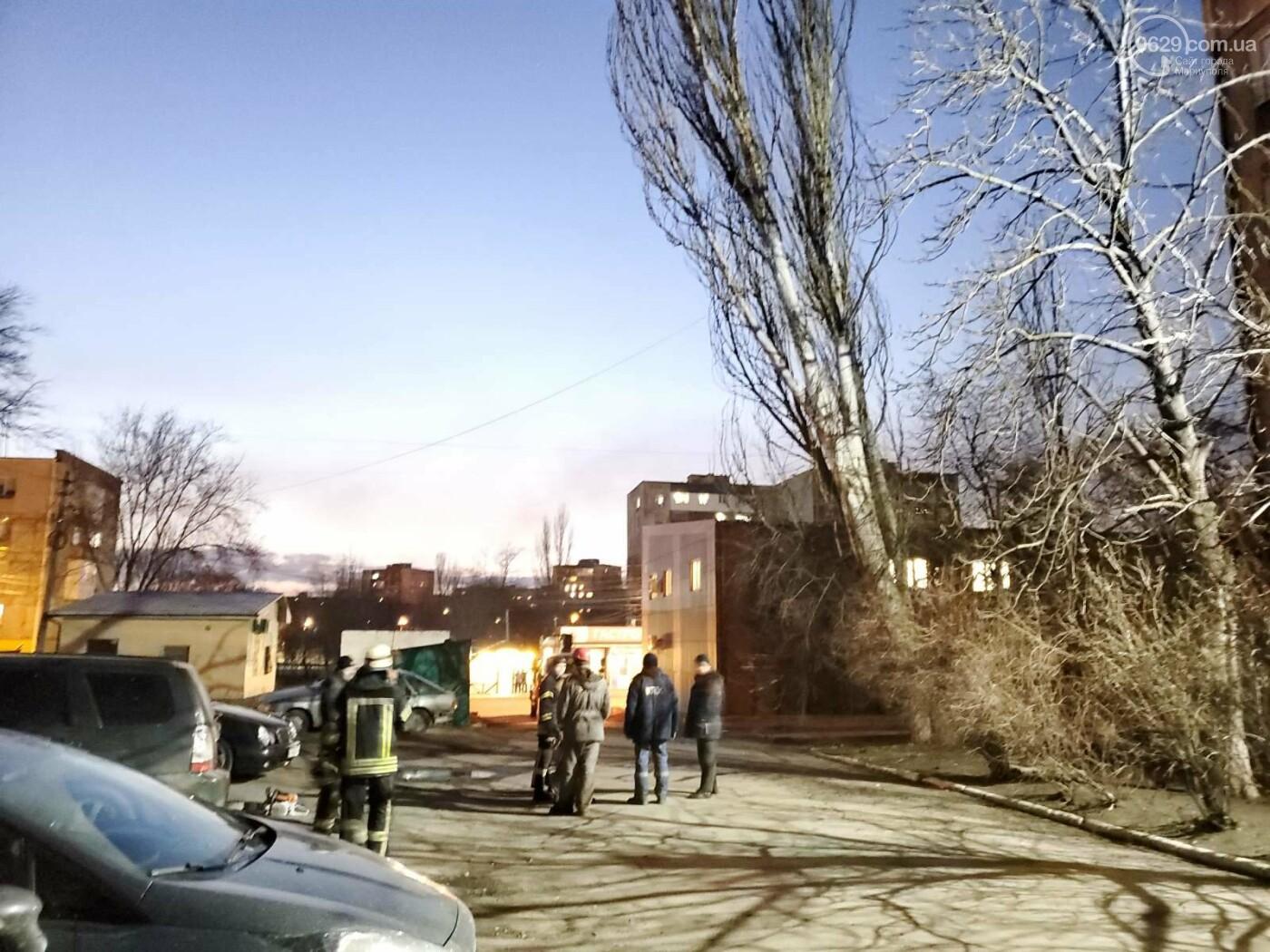 В Мариуполе спасатели убрали опасное дерево, - ФОТО, фото-4