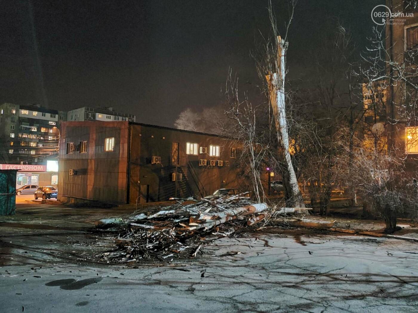 В Мариуполе спасатели убрали опасное дерево, - ФОТО, фото-10
