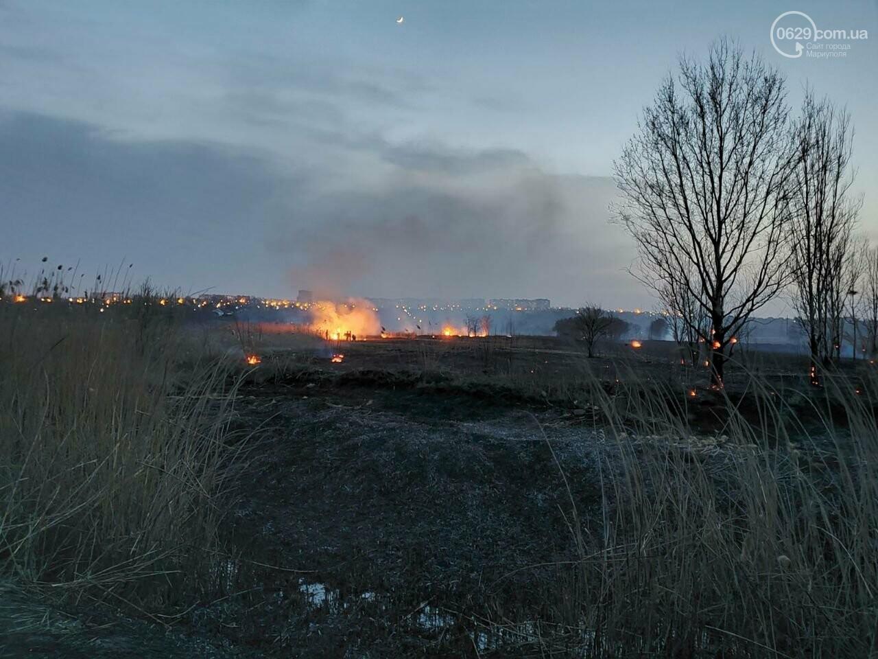 В Мариуполе полыхало поле в Кальмиусском районе, - ФОТО, ВИДЕО, фото-3