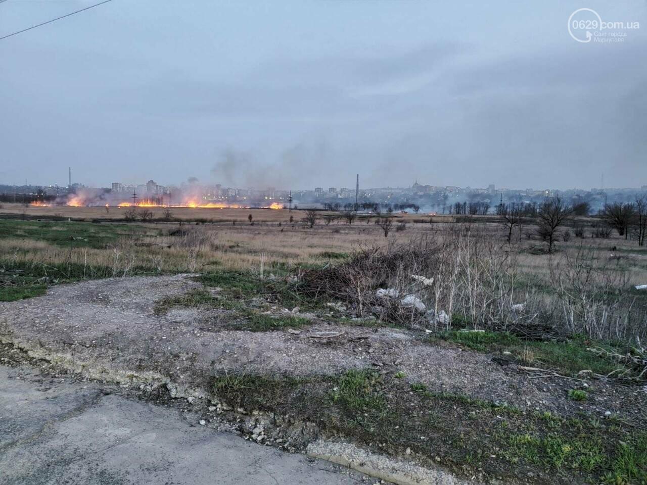 В Мариуполе полыхало поле в Кальмиусском районе, - ФОТО, ВИДЕО, фото-6