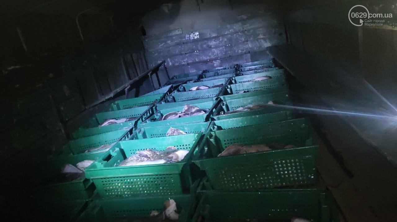 Под Мариуполем выловили камбалу на миллион гривен и отдали полиции,- ФОТО, ВИДЕО, фото-6