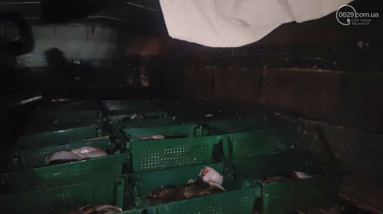 Под Мариуполем выловили камбалу на миллион гривен и отдали полиции,- ФОТО, ВИДЕО, фото-4
