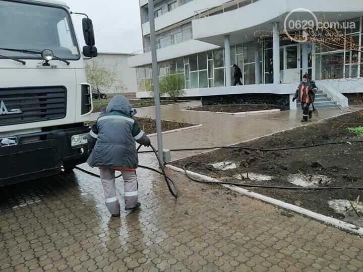 В Мариуполе коммунальщики поливали розы под дождем,- ФОТО, фото-1