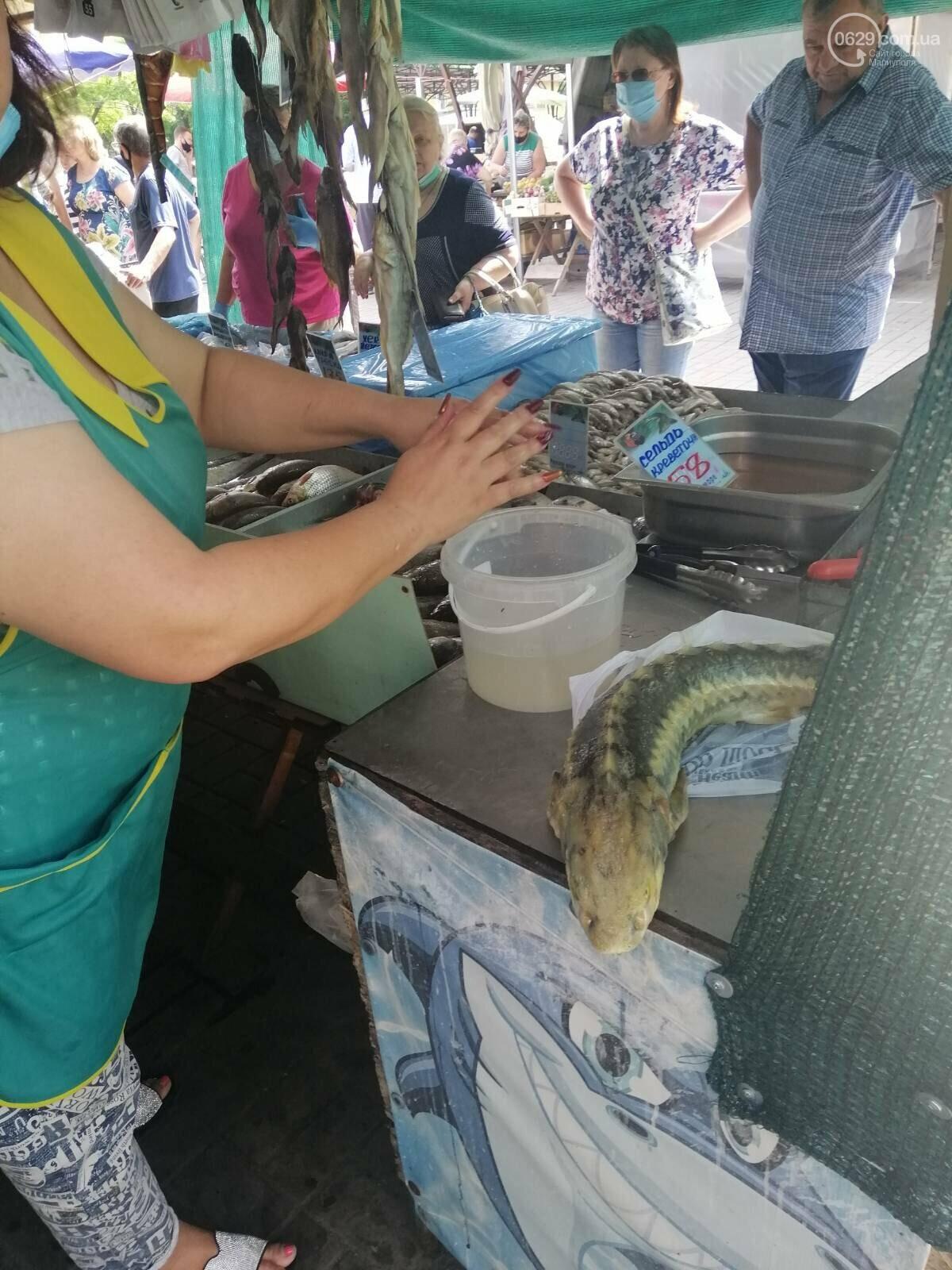 В Мариуполе незаконно торговали осетрами, фото-1