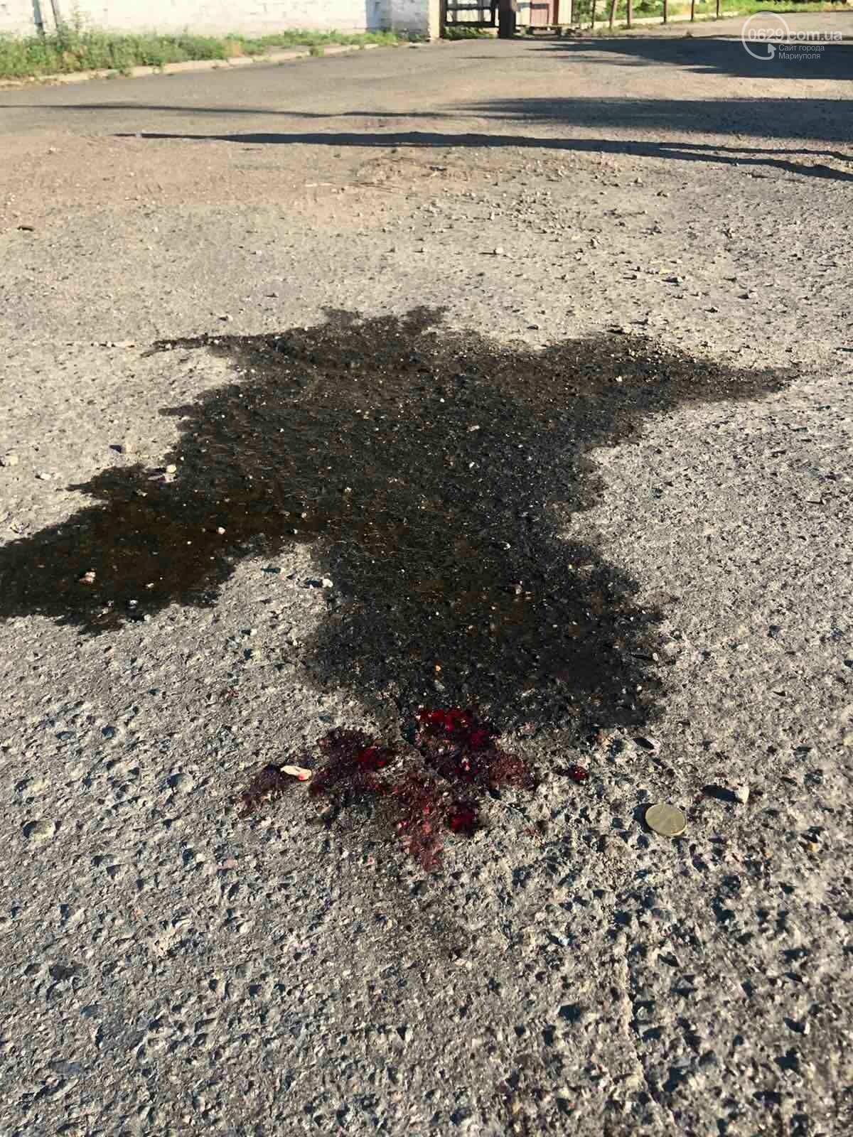 В Мариуполе ВАЗ сбил пешехода, - ФОТО, фото-9