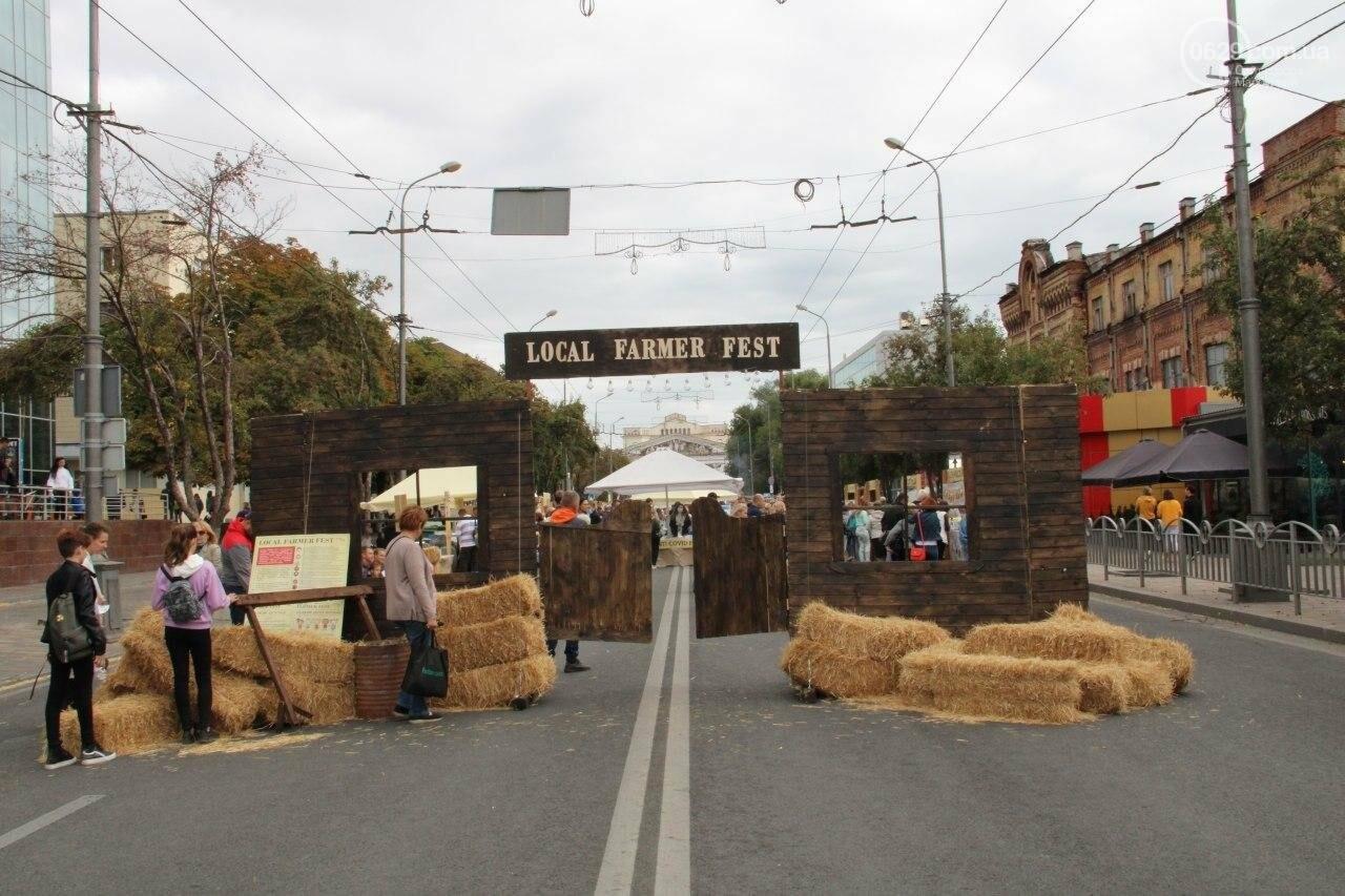 Как в Мариуполе прошел первый фермерский фестиваль, - ФОТО, фото-1
