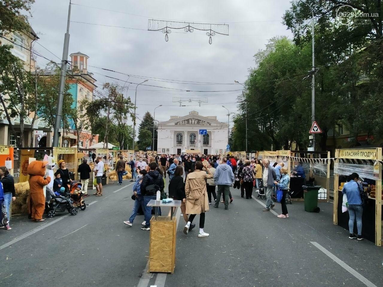 Как в Мариуполе прошел первый фермерский фестиваль, - ФОТО, фото-4