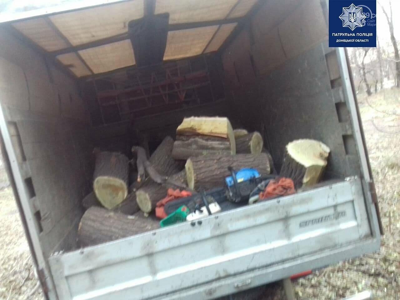 """В Мариуполе """"черные лесорубы"""" уничтожили деревья на улице Макара Мазая,- ФОТО, фото-1"""