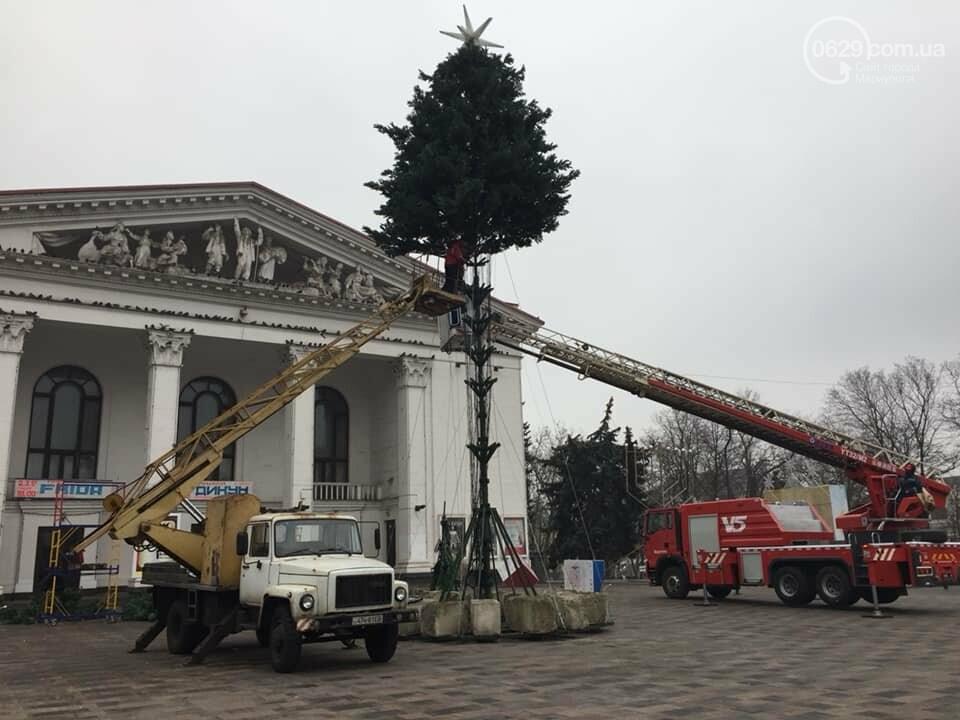 По особому заказу. В Мариуполе начался монтаж главной елки, - ФОТО, ВИДЕО, фото-2