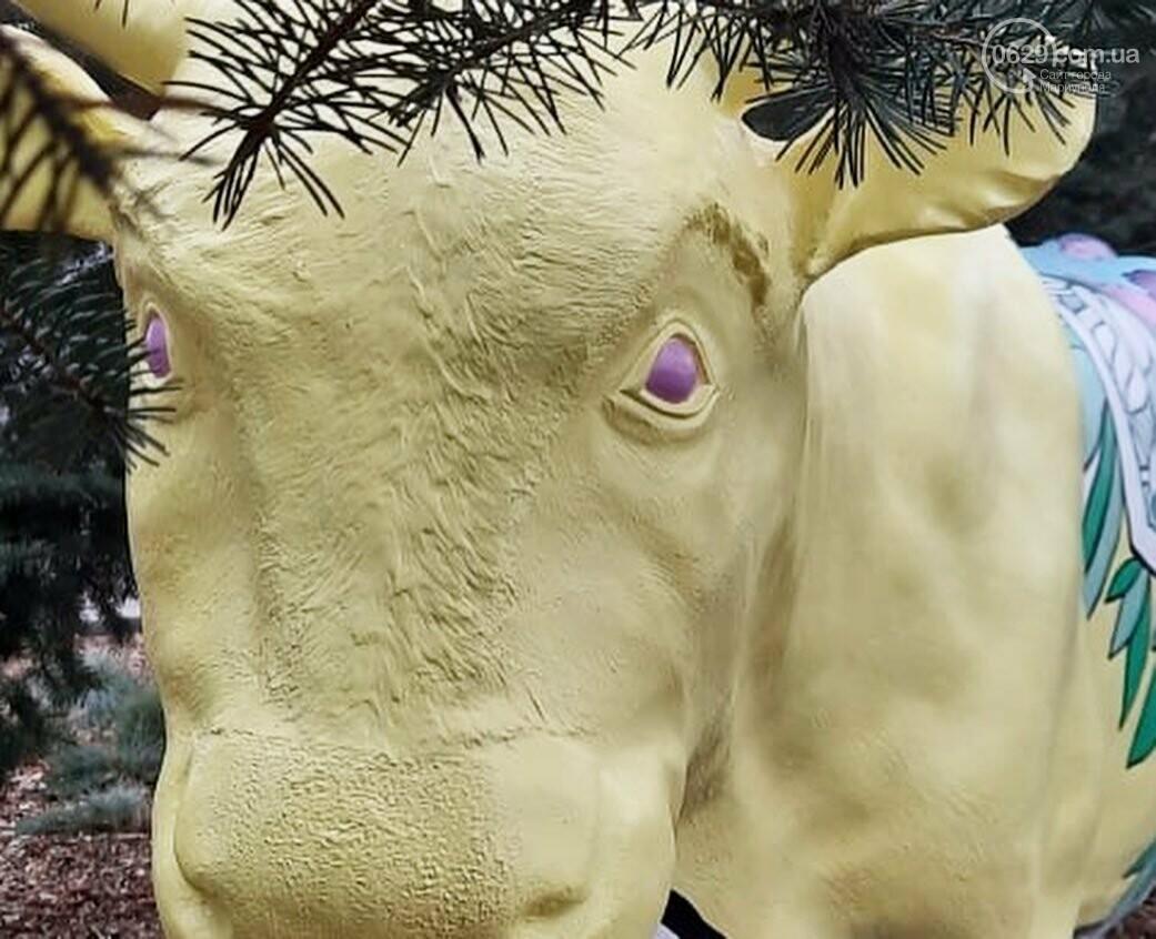 В Мариуполь привезли 12 новогодних  бычков, - ФОТО, фото-5