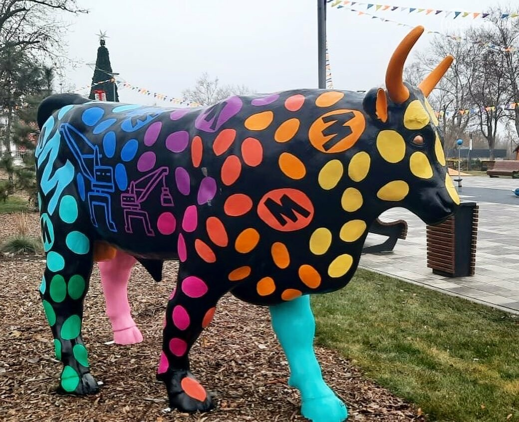 В Мариуполь привезли 12 новогодних  бычков, - ФОТО, фото-8