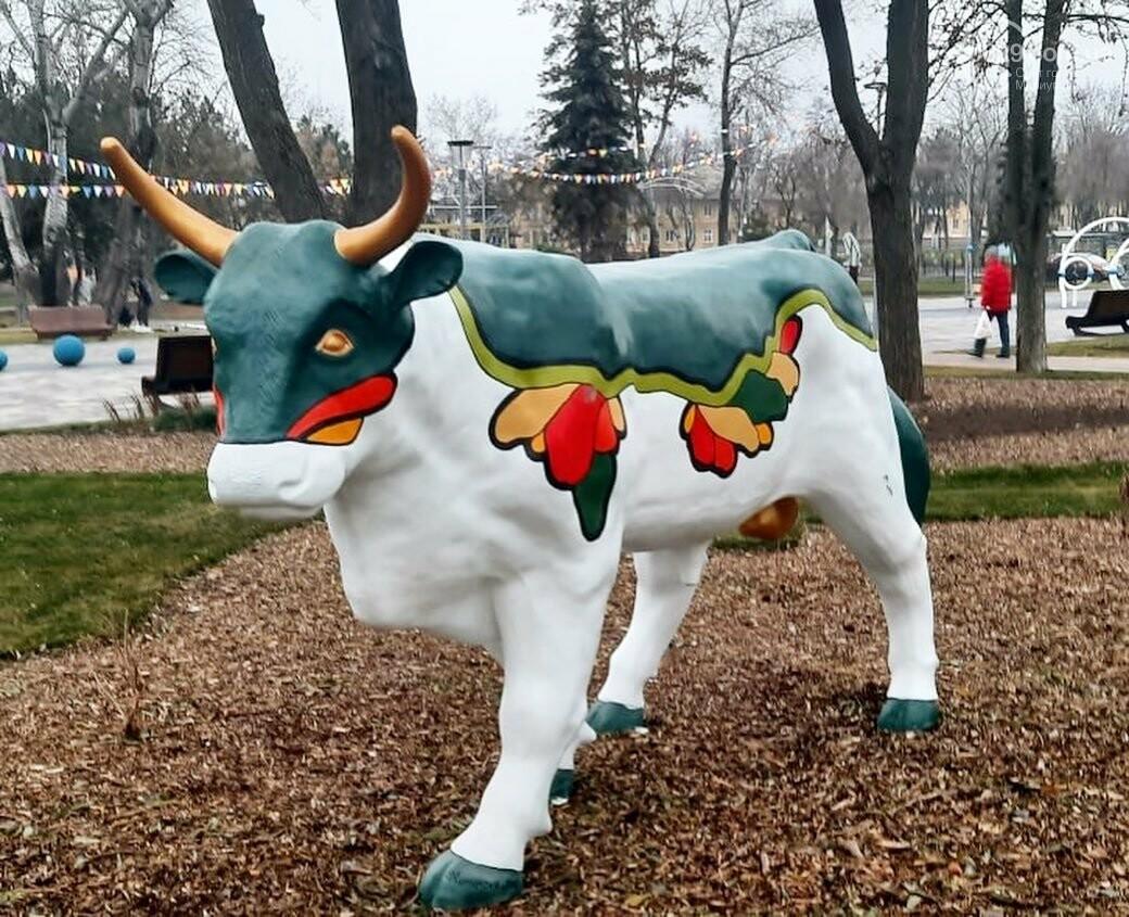 В Мариуполь привезли 12 новогодних  бычков, - ФОТО, фото-1