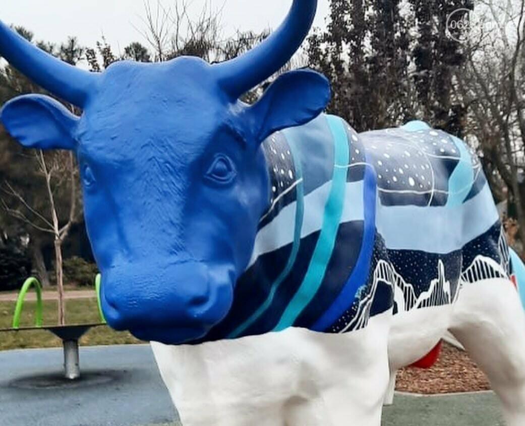 В Мариуполь привезли 12 новогодних  бычков, - ФОТО, фото-3