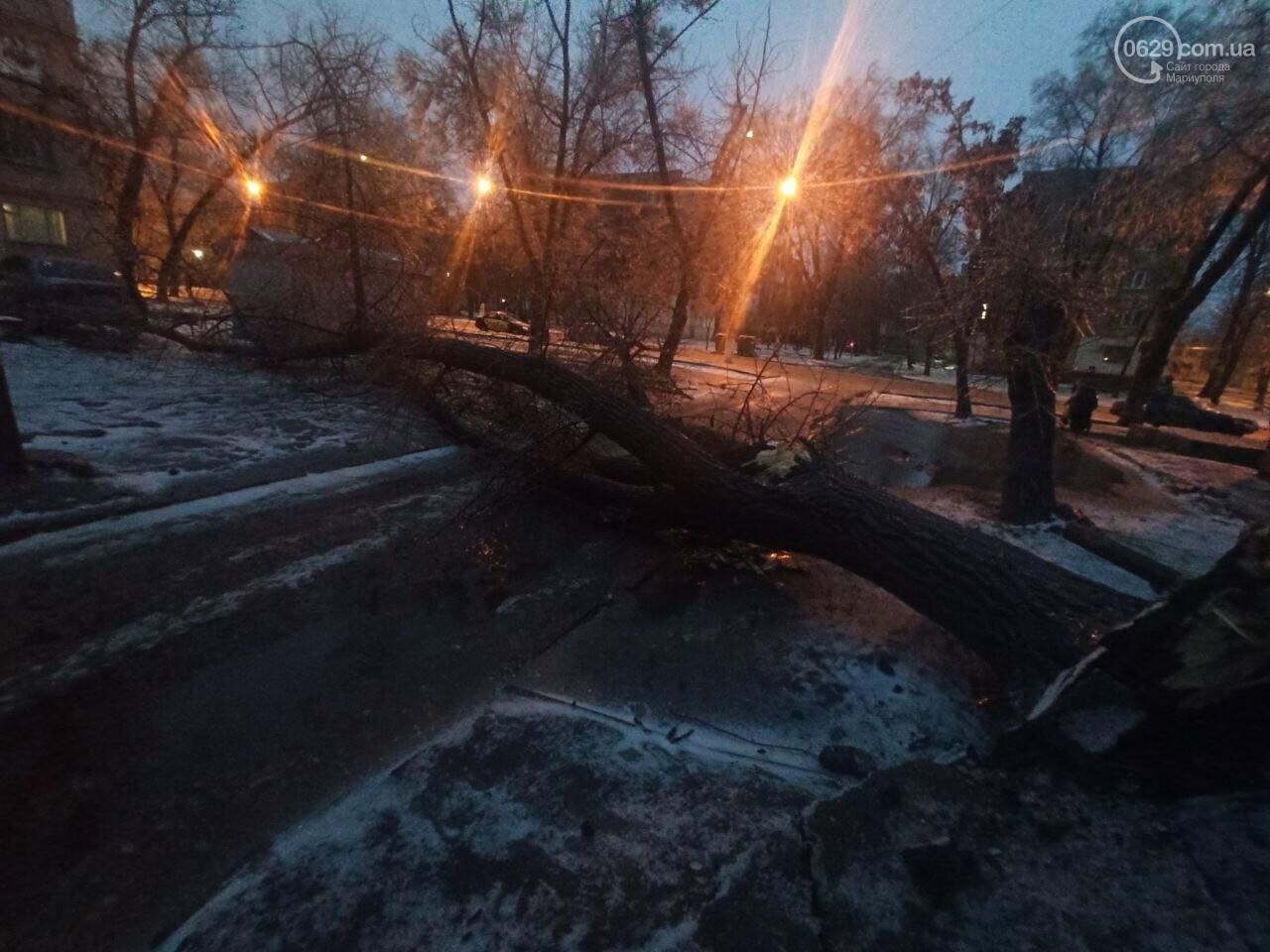 Непогода в Мариуполе: обледенения, поваленные деревья и аварии на дорогах, - ФОТО, фото-1