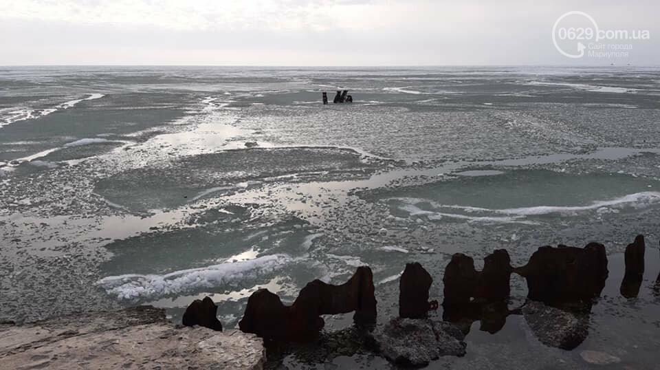 Спецоперация по спасению животных. В Мариуполе на льду застряли четыре собаки, -  ФОТО, фото-3