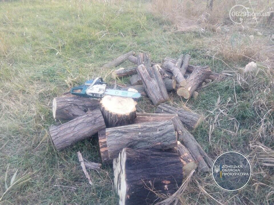 """В Мариуполе судят """"лесоруба"""", который на автомобиле сбил полицейского, - ФОТО, фото-3"""