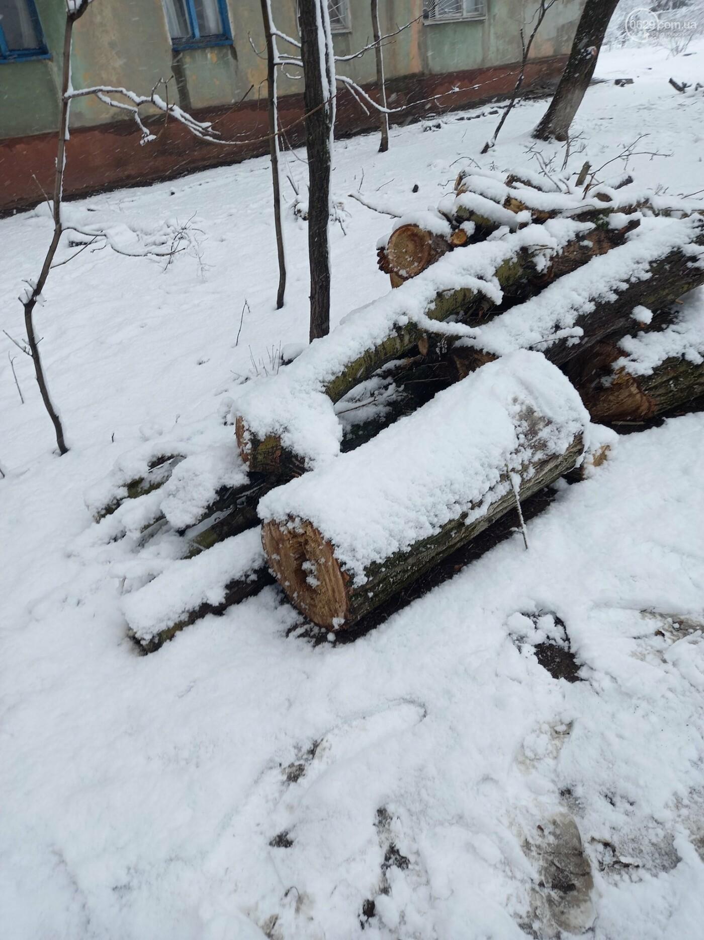 """Почему """"волонтерам"""" запретили рубить деревья в Мариуполе, - ФОТО, фото-4"""