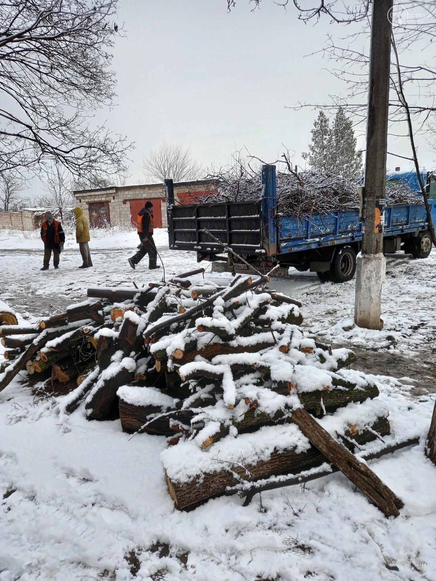 """Почему """"волонтерам"""" запретили рубить деревья в Мариуполе, - ФОТО, фото-6"""
