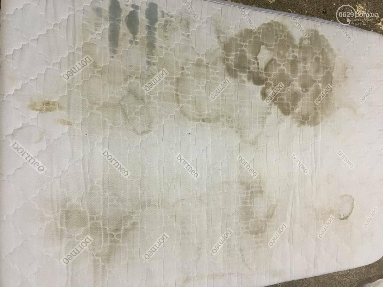 Химчистка ковров в Мариуполе в 8-этапов от Clean Master. Ваши ковры будут как новые!, фото-9