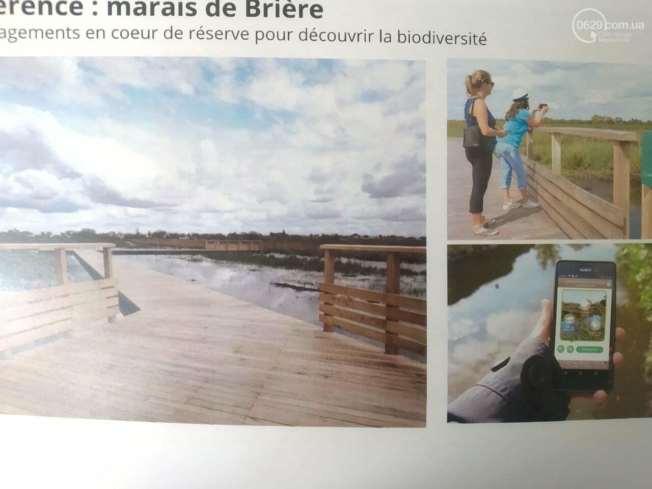 Какими станут мариупольские пляжи. Идеи, предложения, проекты, - ФОТО, фото-6