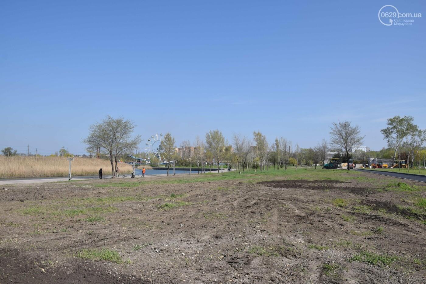 Барбекю на солнцепеке! Сколько стоит отдых в парке Гурова, - ФОТОРЕПОРТАЖ, фото-8
