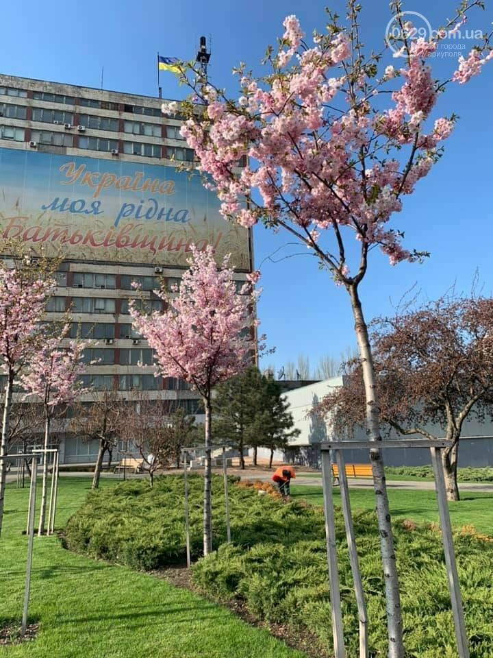 Пасхальный квест, велопробег. Как в Мариуполе  провести первые дни мая,- ФОТО, фото-4