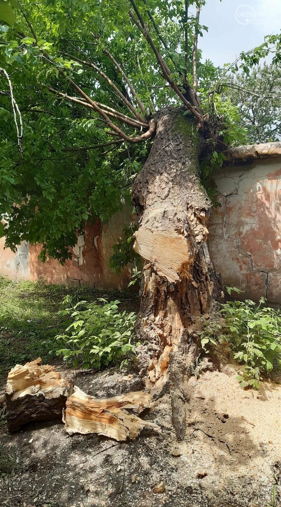 """Мариуполь после грозы. Какие """"удары"""" нанесла стихия,- ФОТО, фото-1"""