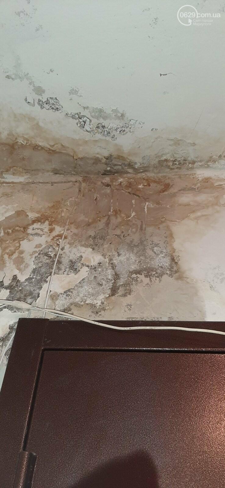 Протікаючий дах в одній з 9-поверхівок Маріуполя став каменем спотикання мешканців, - ФОТО, фото-9