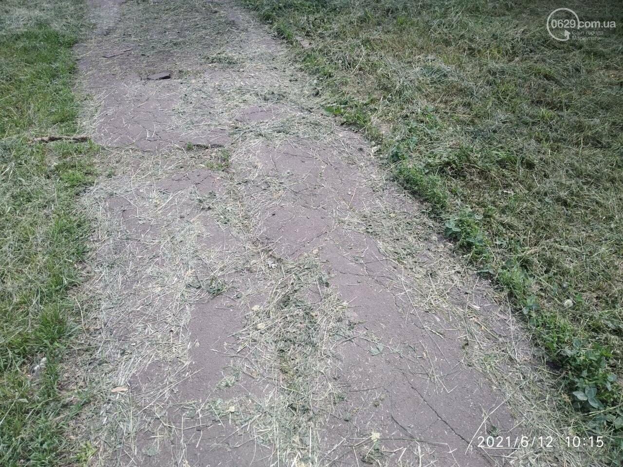 В парке Победы после потопа снова оставили скошенную траву, - ФОТОФАКТ, фото-1