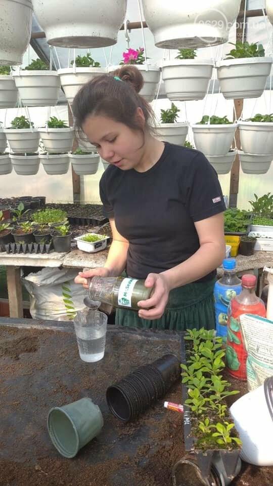Мариупольчанка придумала, как получить большой урожай благодаря водорослям, фото-3