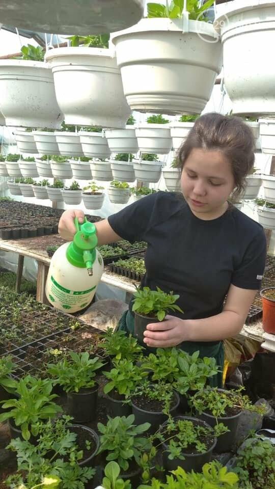 Мариупольчанка придумала, как получить большой урожай благодаря водорослям, фото-4