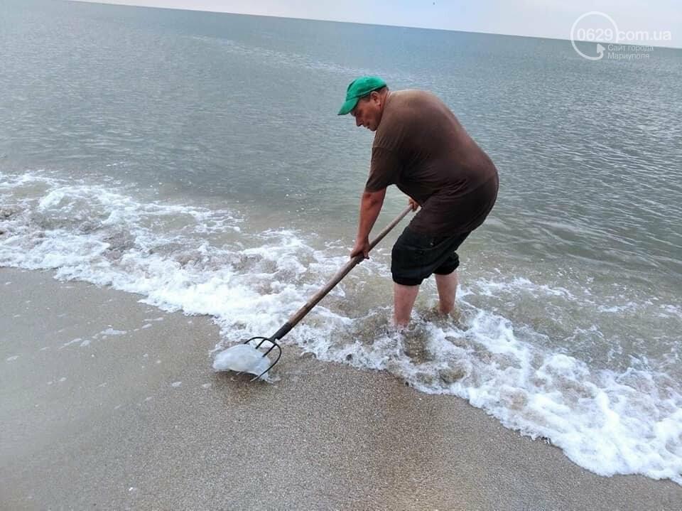 Выбрасывать, строить или есть!  Что делать с медузами, которые заполонили пляжи под Мариуполем, - ФОТО, фото-4