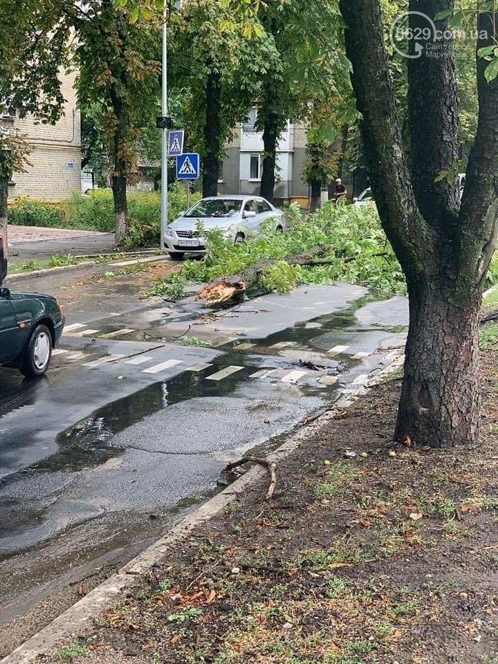 Над Волновахой пронесся ураган,- ФОТО, фото-5